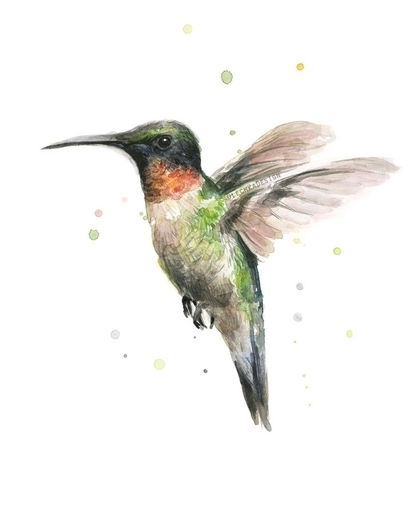 Ruby Throated Hummingbird - hummingbird - olechkadesign | ello