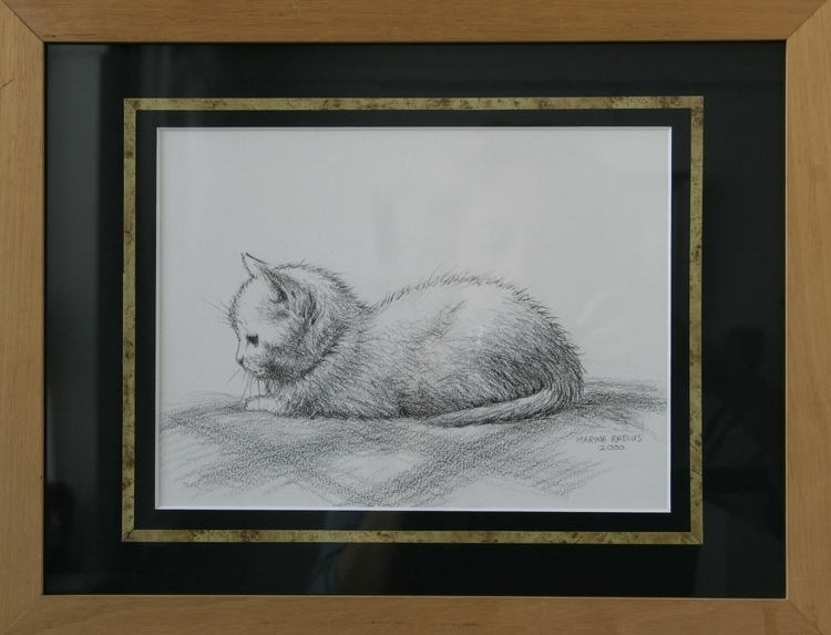 White kitten, pencil/paper, 18x - marina-7013 | ello