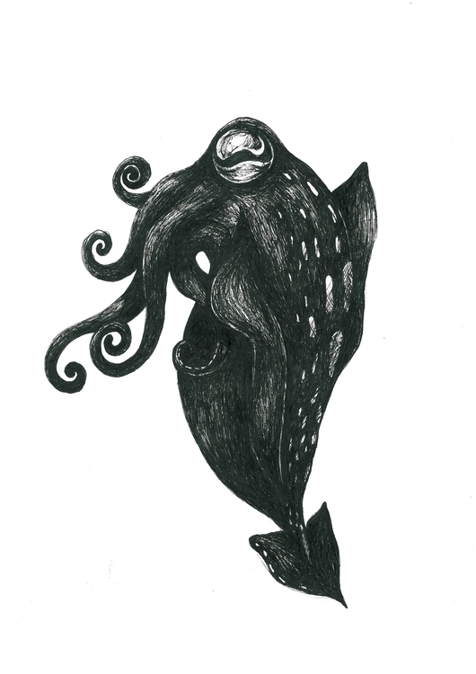 Squid - llioh - illustration, animal - llioh | ello