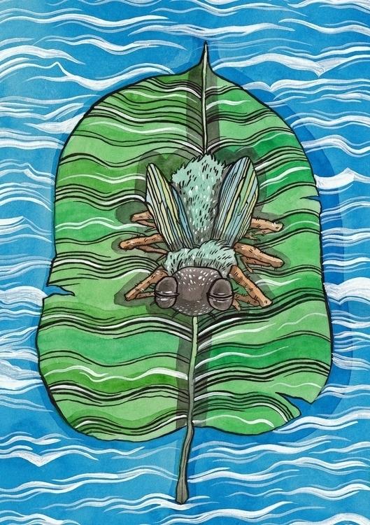 Fly, - Siesta - leaf, water, illustration - jkirkham | ello