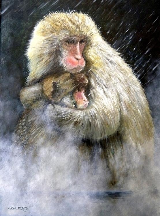 Snow Monkeys - ziyae   ello