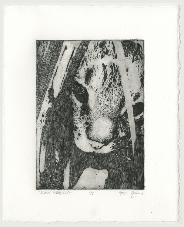 Black Tabby Cat - printmaking, etching - morganofsharick | ello