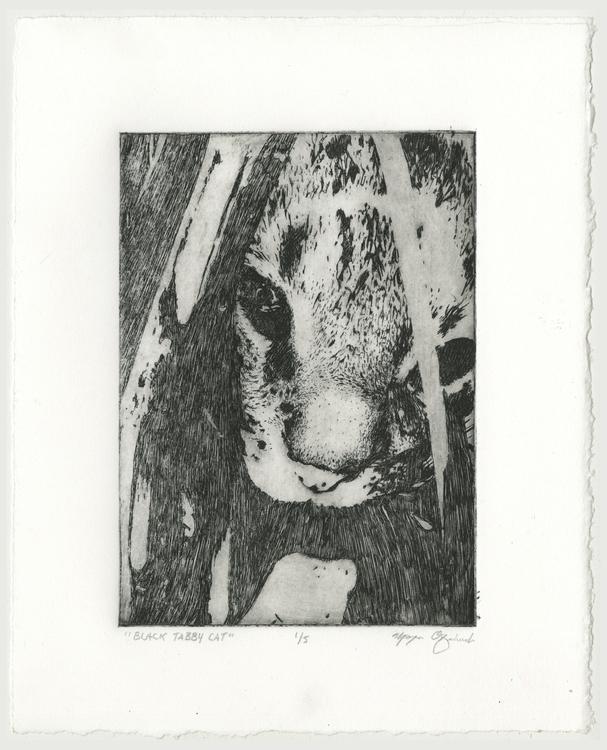 Black Tabby Cat - printmaking, etching - morganofsharick   ello