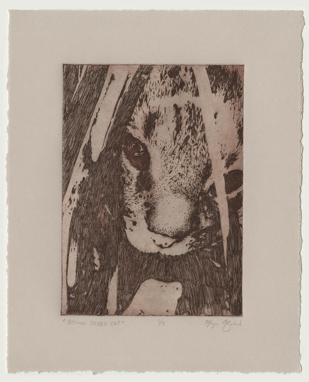 Brown Tabby Cat - cat, printmaking - morganofsharick   ello