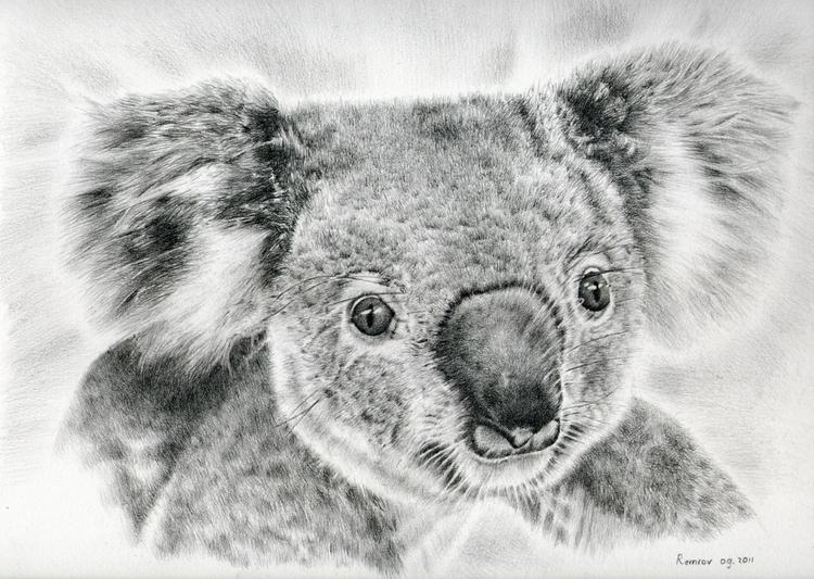 Koala Newport Bridge drawing - koala - remrov | ello