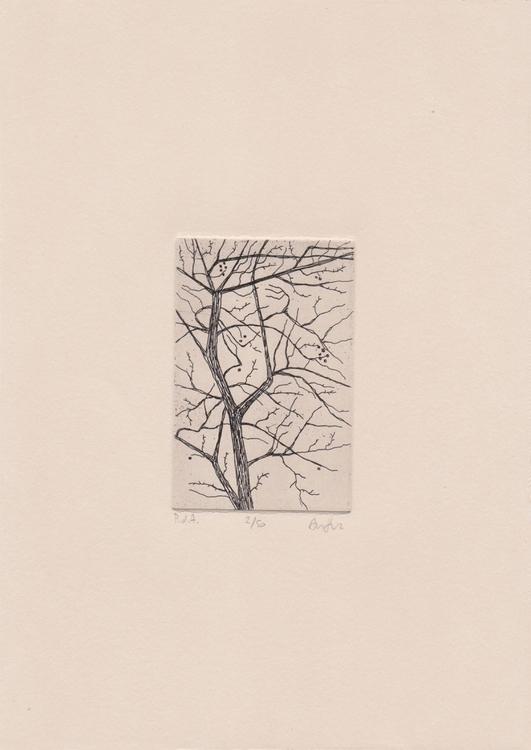 Copperplate etching tree copper - ariautas | ello