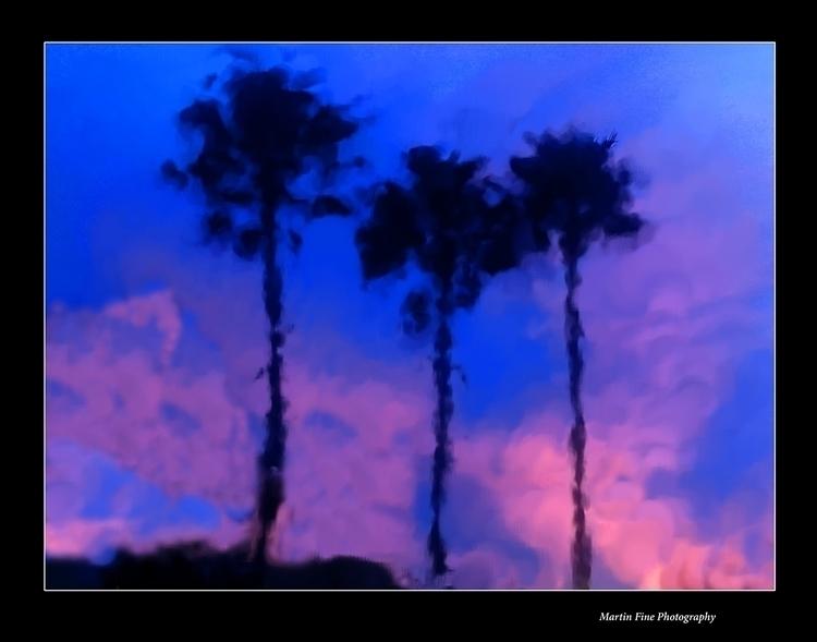 Palms Red Sunset - martfine | ello