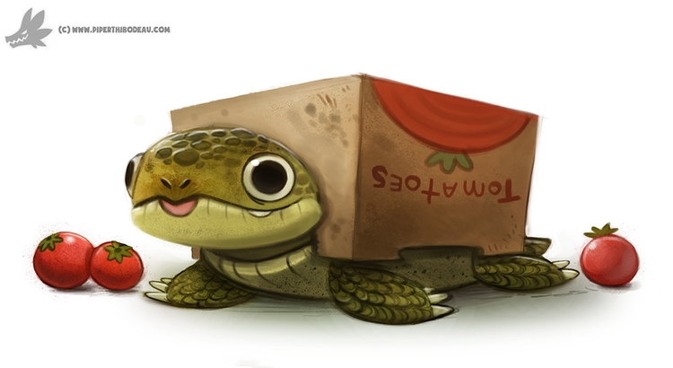 Daily Painting 908# Box Tortois - piperthibodeau | ello