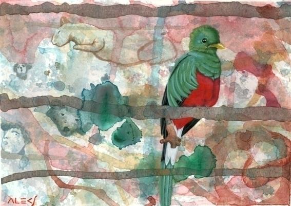 Quetzal - painting, watercolor, acrylic - alecs-1191 | ello