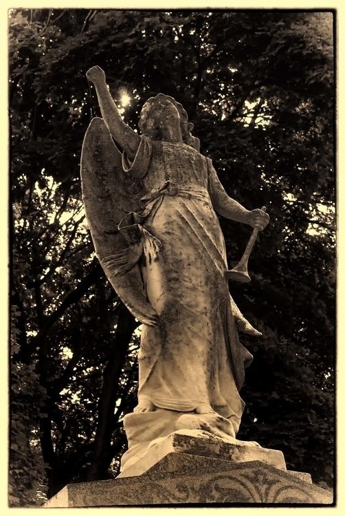 Angel - waynemiller | ello