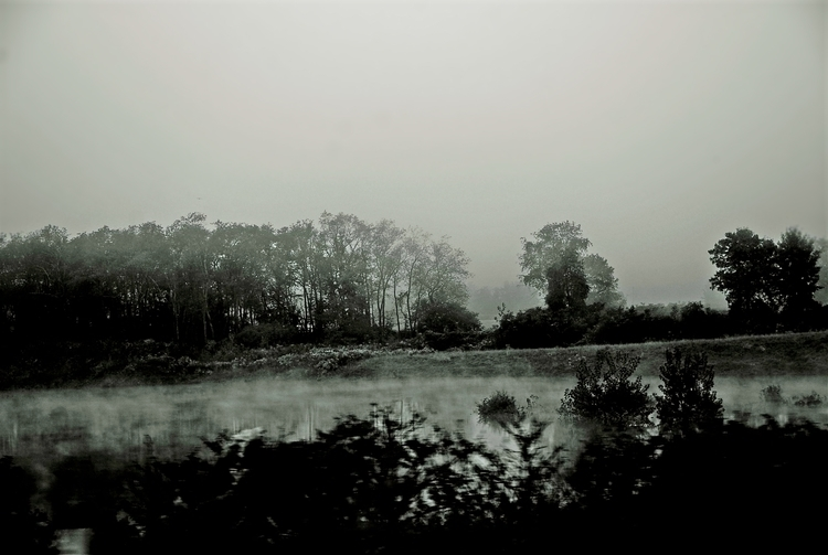 Foggy Upstate York - photography - posemanikin | ello
