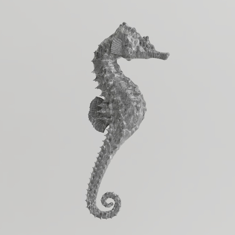 Seahorse - sculpture, sculpt, 3d - rubbo | ello