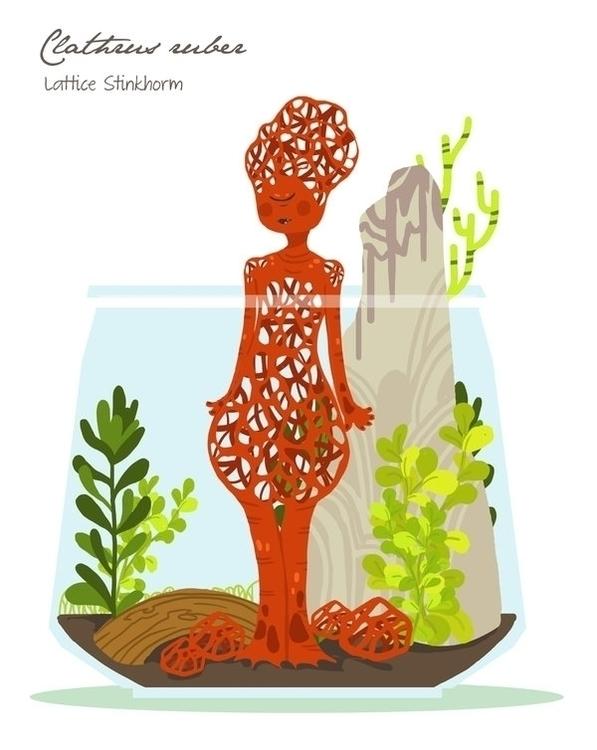 Lattice Stinkhorn (Clathus rube - rei410 | ello