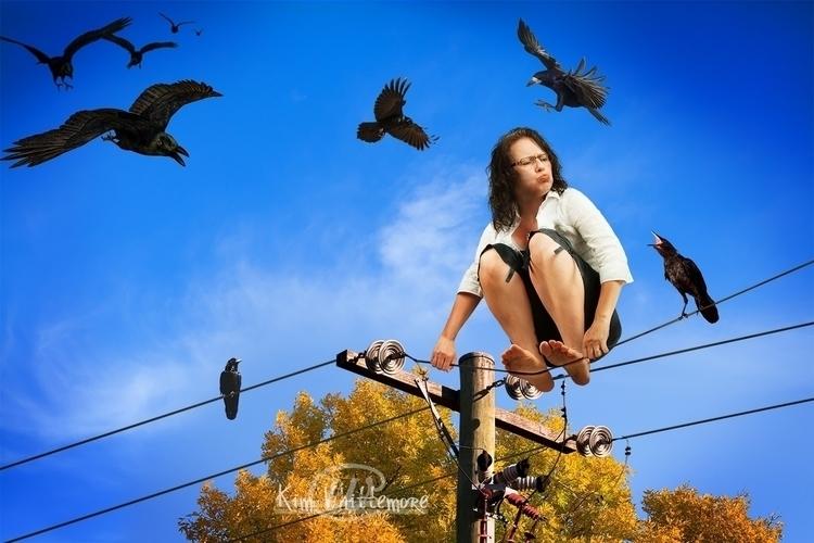 Wired - birds, wire - kimwhit-2847 | ello