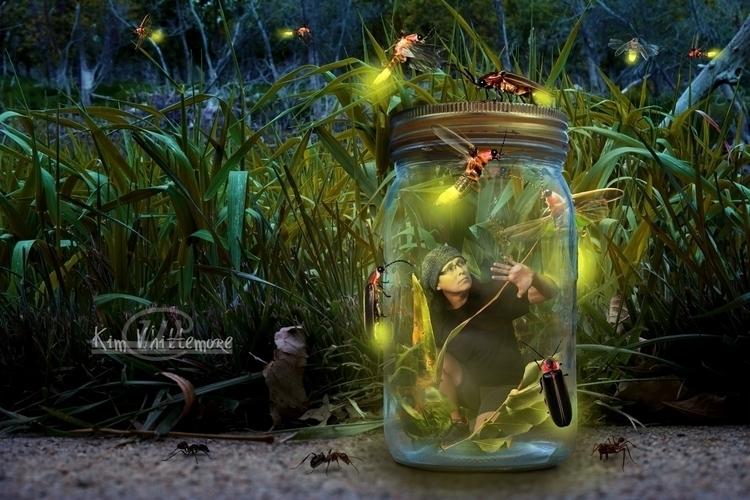 Payback - firefly, jar, lights - kimwhit-2847 | ello