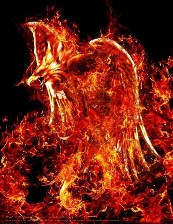 Firebird - fantasy, fantasyart, phoenix - thelycanknight | ello