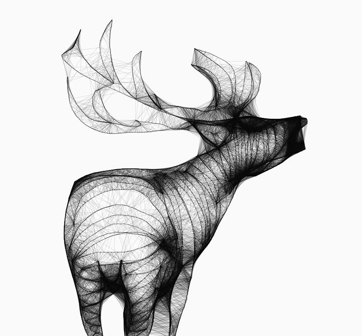 Deer - animal - siguni   ello