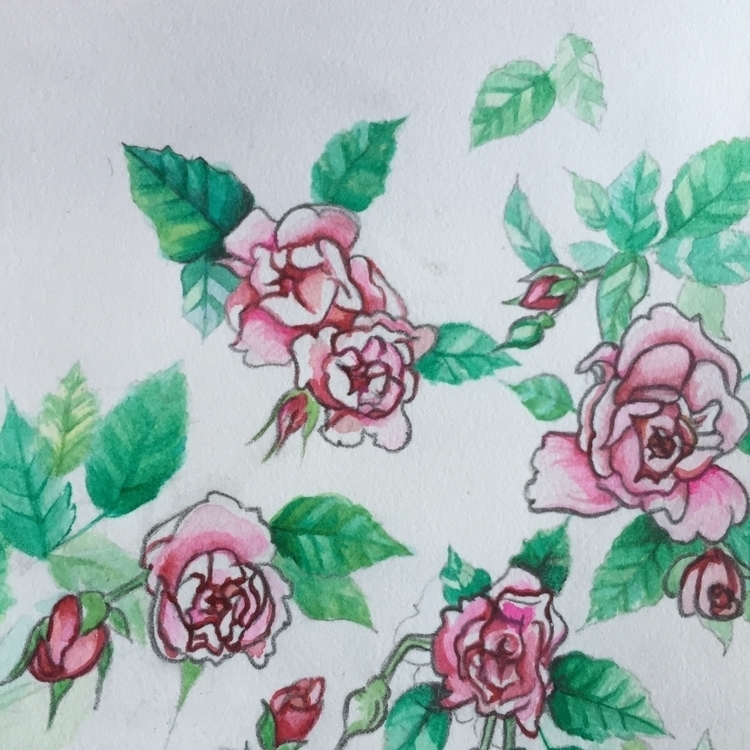 Roses - roses, pink, nature, watercolor - theaxx | ello
