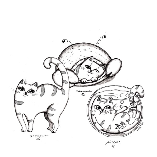 Water - cats, cat, zodiacat - nikaq | ello