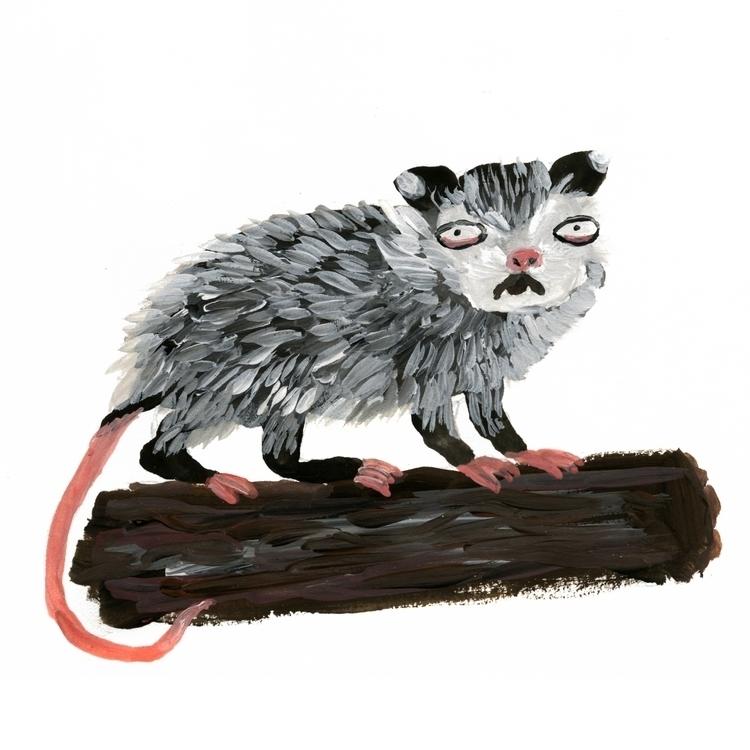 Opossum - illustration, children'sillustration - prianikn   ello