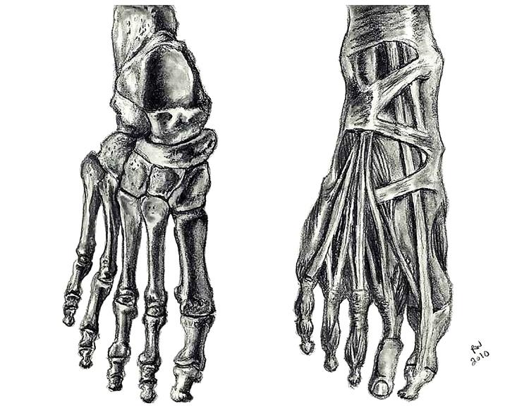 Feet Life Drawing Pencil - drawing - wilkinso-5391 | ello