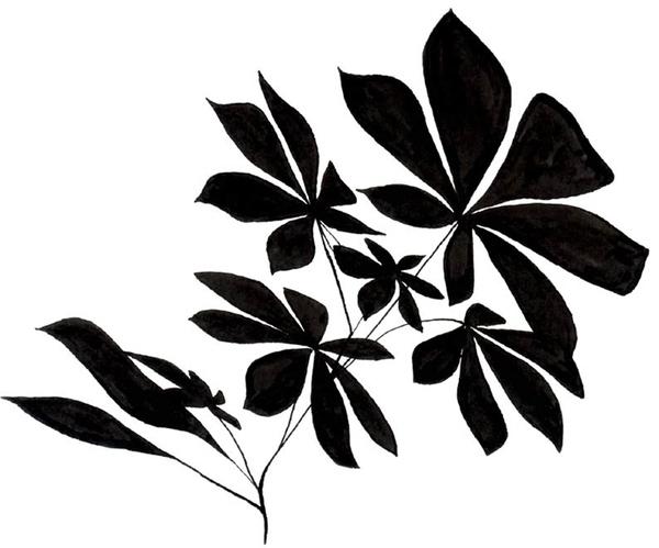 illustration, blackandwhite, chestnut - robincottage | ello