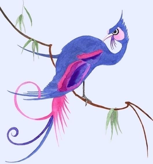 watercolour, illustration, paradisebird - robincottage | ello