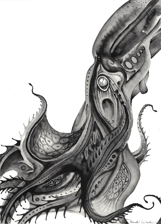 Vampire Squid 1 - illustration, painting - bluemask-5749 | ello