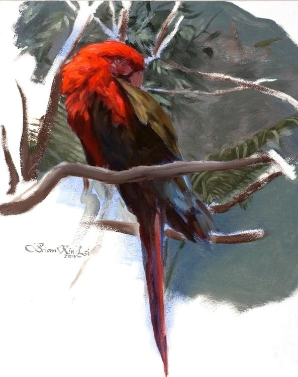 Parrot Brian Lei - animal, bird - brianlei | ello