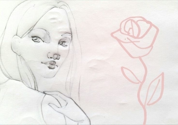 drawing, pencil, flower, sketching - camillalocatelli | ello