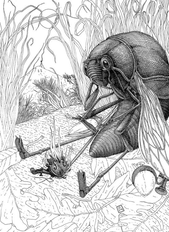 La Cicala sospira - illustration - gabriele-8497 | ello