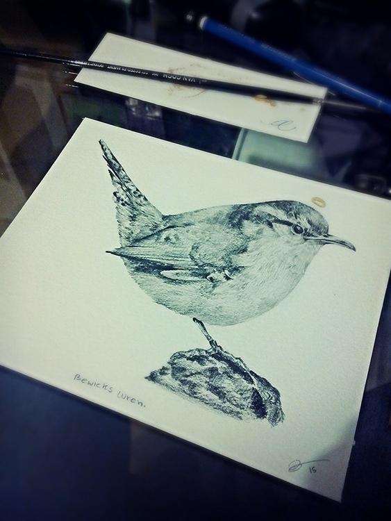 upload birds, paranoid people d - uru-1113 | ello