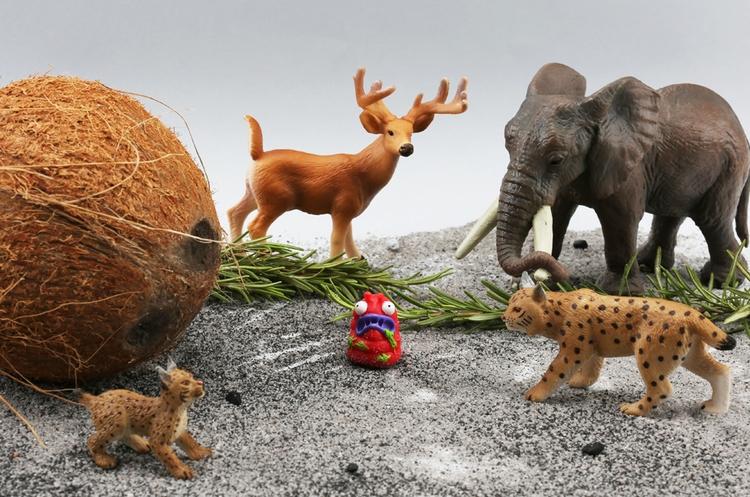 animal, craft, photography, elephant - iremyesil | ello