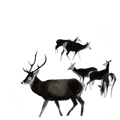 deer, blackandwhite, watercolour - robincottage | ello