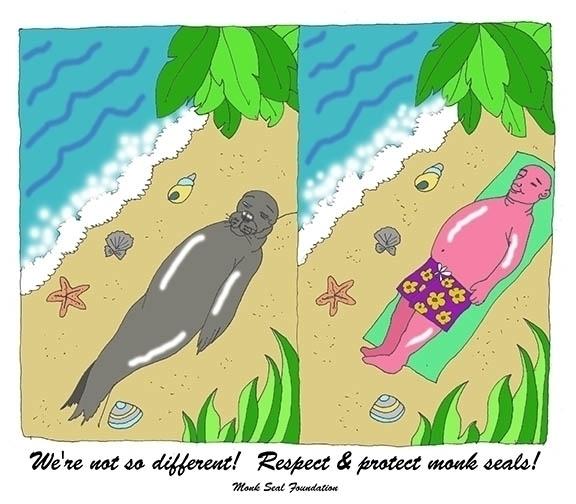 Cartoon Monk Seal Rescue Org.,  - laurencurtis   ello