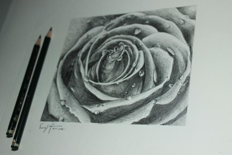 Rose - Macro ART - rosedrawing, realisticrose - vanniegama | ello