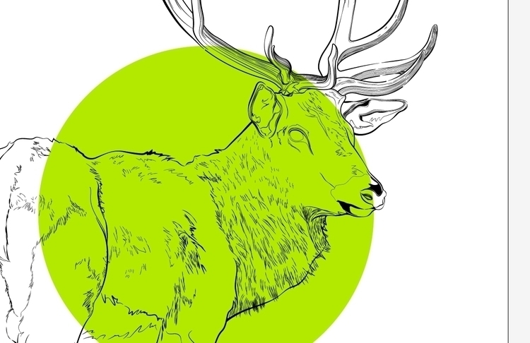 Deer! work progress - deer, nature - atsukosan-3588 | ello