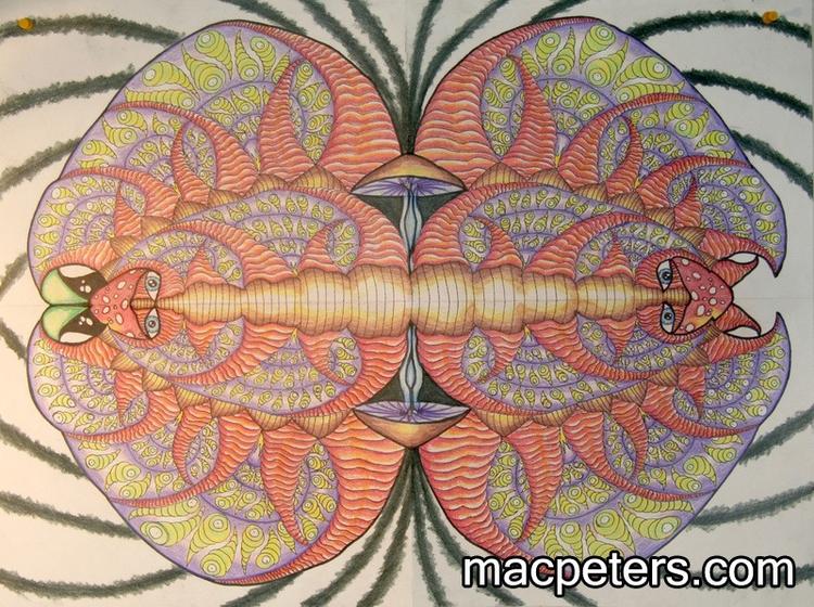 Slug Bug - fractal, mushroom, slug - macpeters | ello