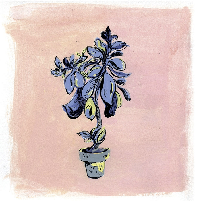 plant - diannaxu | ello