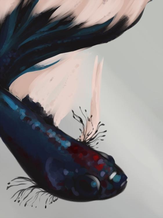 dope betafish - fish, digitalart - tkmaw | ello