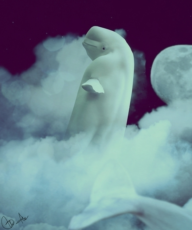 White Noise - dreams alive - whale - amarillis | ello
