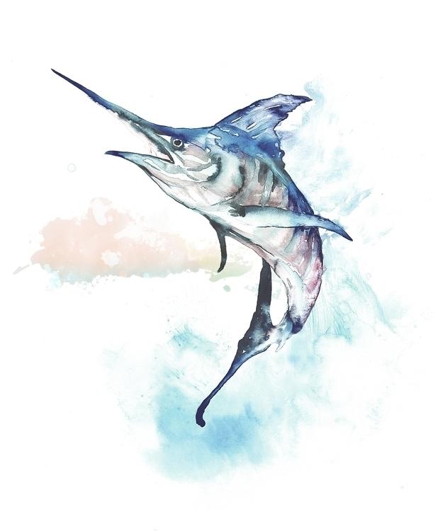 Marlin, Offshorefishing, bluemarlin - bccreativity | ello