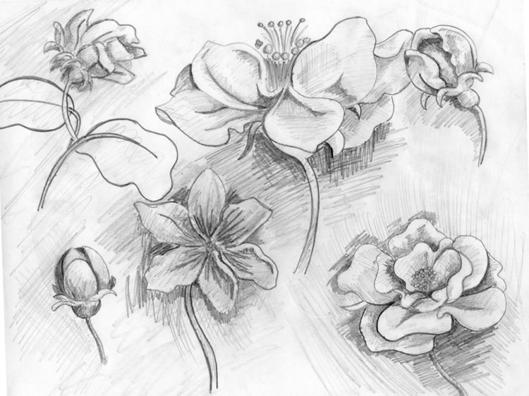 , illustration, painting, drawing - jonatanleyton | ello