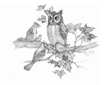 'Owl Friends - drawing - brandyhouse | ello