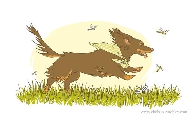 Doxie Summer - dachshund, digital - chelseac-2002 | ello