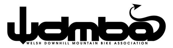 Logo design WDMBA - logodesign, logotype - inkedsloth | ello
