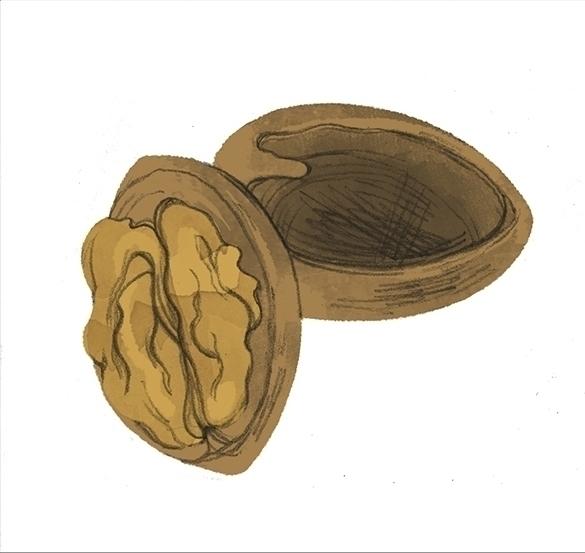 nuts - cmouta | ello