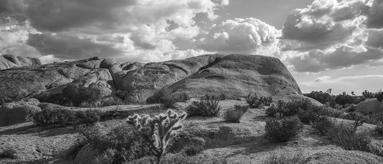 formation - photography, joshuatreenationalpark - frankfosterphotography | ello