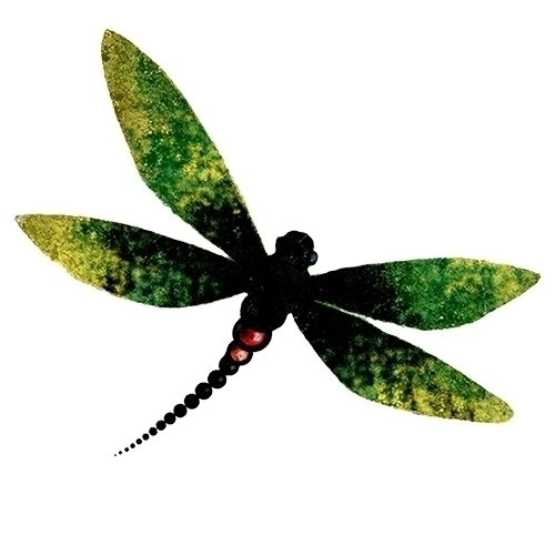 dragonfly - graphicdesign, vectorart - kat77-2308 | ello