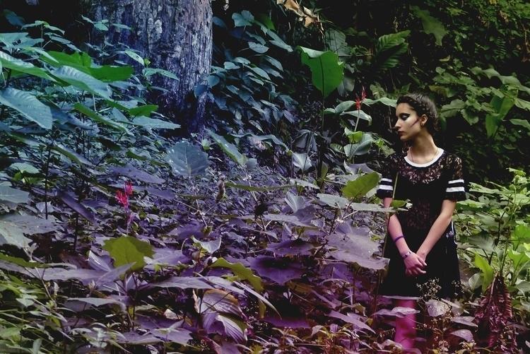 nature, photography - jimmyortiz | ello